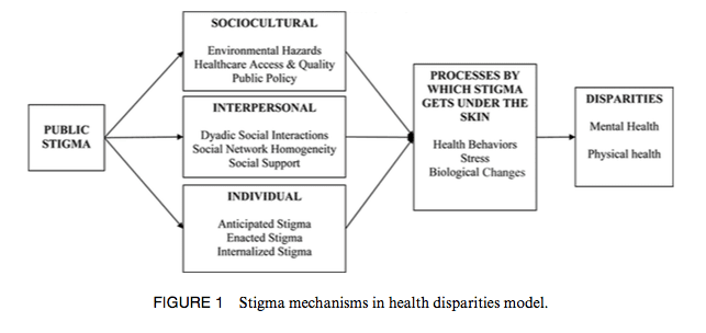 Stigma Mechanisms in Health Disparities Model