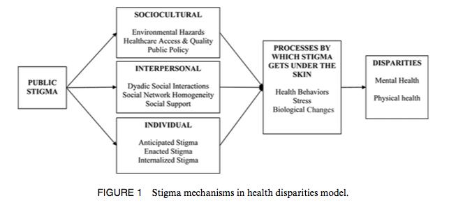 Stigma Mechanisms in Health Disparities Model